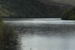 elan valley 4